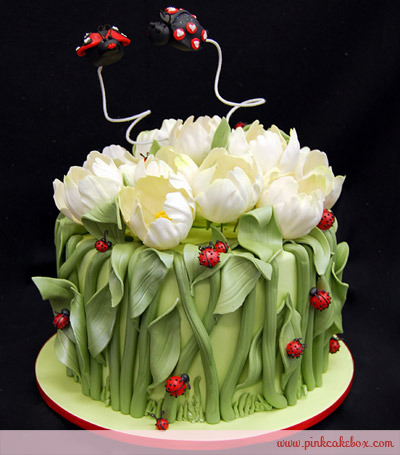 for Decorazioni torte ladybug